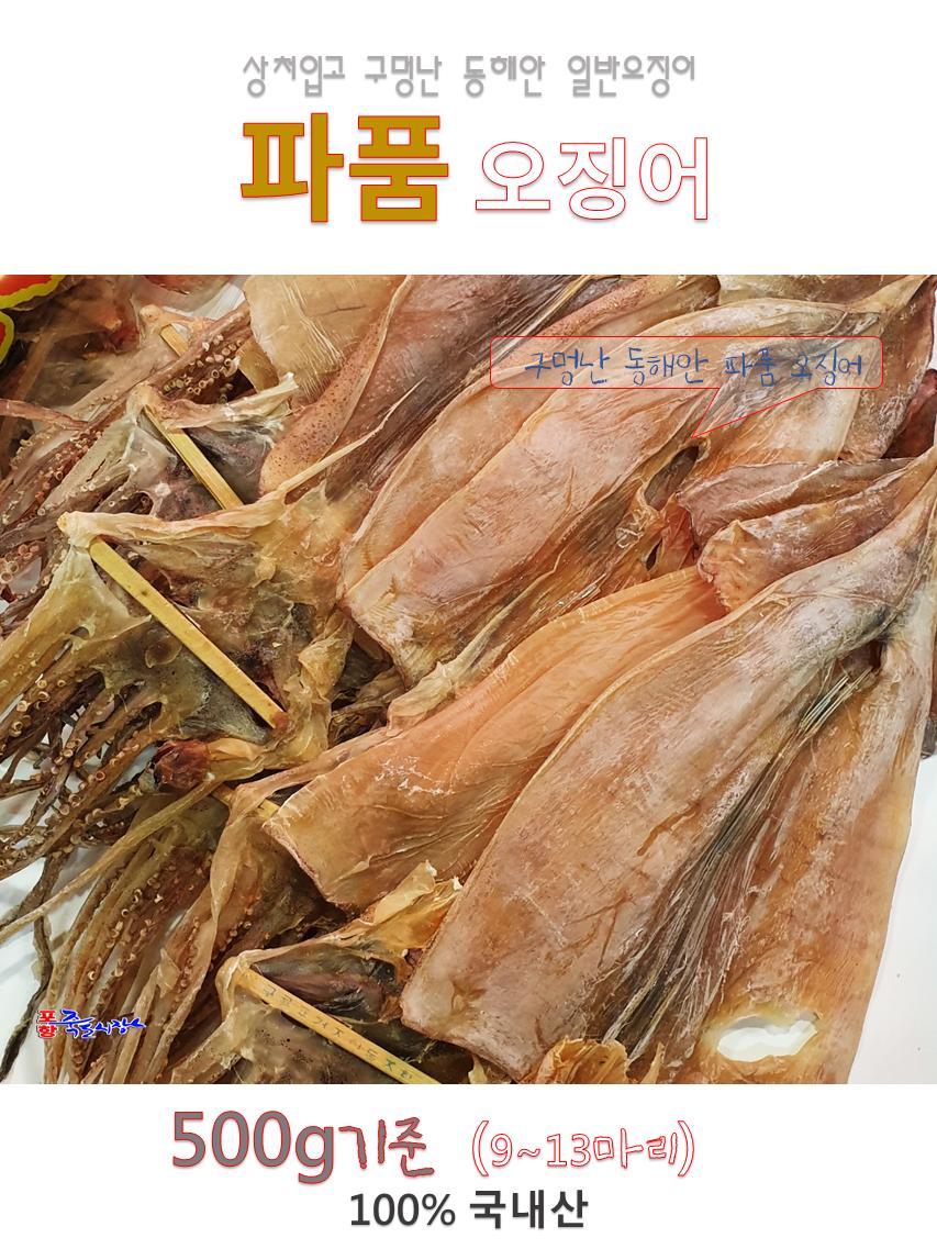 일반파품오징어500-01.png
