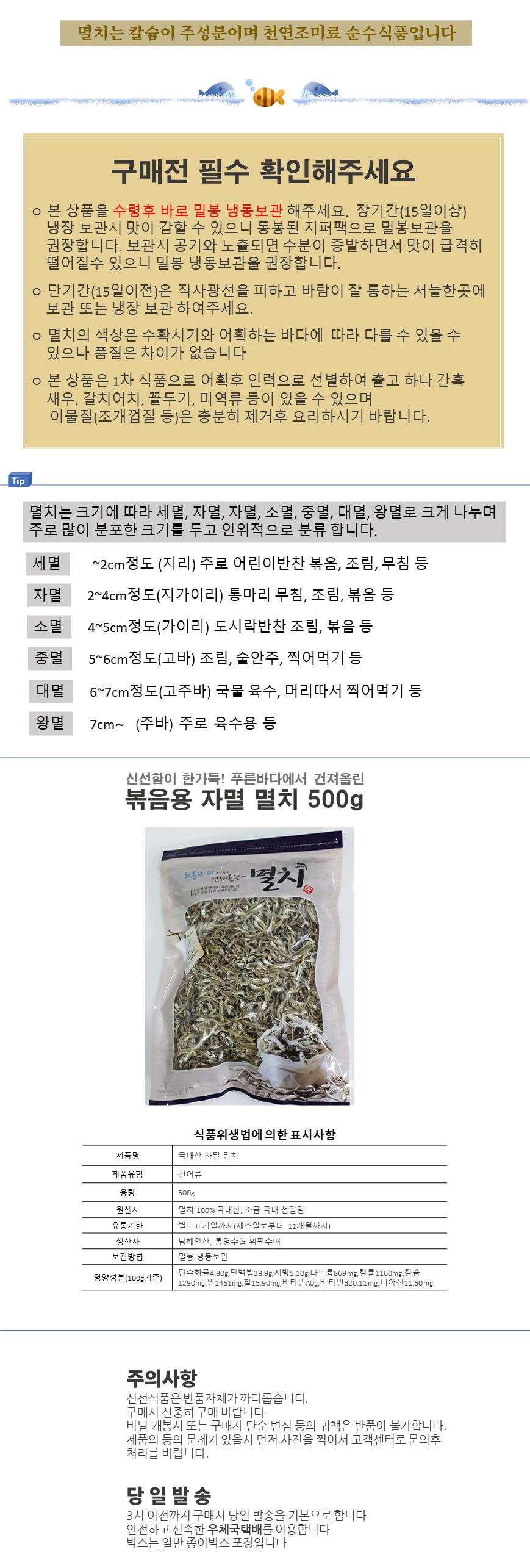 멸치(지리가이리)500-03.png