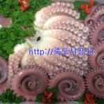 문어 7kg (생물문어) 참문어 이바지 행사 선물 포항 죽도시장
