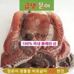 급냉문어 통마리 1.5k~3kg 100%국내 동해안산 참문어 냉동문어