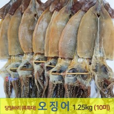 오징어(특특大) 10마리 (1.25kg)기준 동해안 건오징어 마른오징어 포항 죽도시장